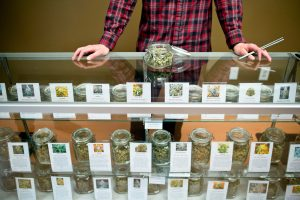 Medical marijuana for sale in display cases at dispensary.